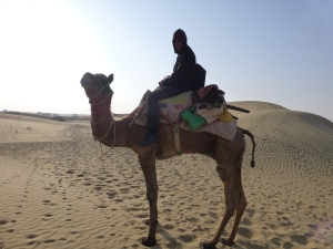 Papaya huppelde mij door de Thar-woestijn.