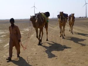 Ali Khan met onze drie kamelen.