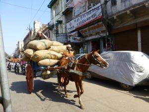 Straatbeeld in Gwalior.