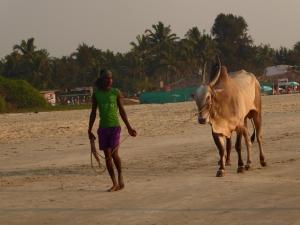 Op het strand van Benaulim