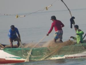 Sebhi haalt zijn vangst aan boord